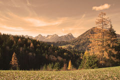 Autumn Alps Stock Images