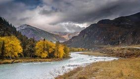 Autumn Altai-landschap royalty-vrije stock fotografie