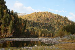 Autumn in Altai. Autumn nature of Altai, the river beneath the mountains Stock Image