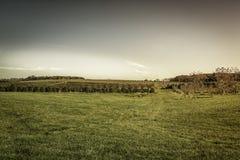 Autumn on American Farm Stock Photo
