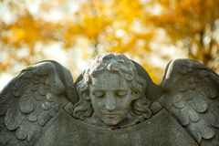 Autumn angel. Stone angel guarding a tombstone on All Saint's day in autumn Stock Photos
