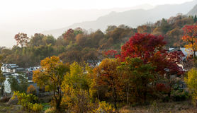 The Autumn of Anhui China. Sunrise of one day in the country, Anhui ,China Stock Photos