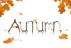 Autumn Announcement. Maple leaves and branches shaped as letters Stock Photography