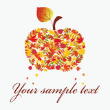 Autumn apple. Royalty Free Stock Photos