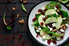 Autumn Apple Cranberry Salad caseiro com noz, queijo de feta e vegetais imagens de stock royalty free