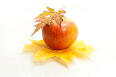 Autumn apple and leaves. On white background Stock Photos