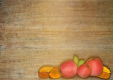 Autumn apple and leaves Royalty Free Stock Photography