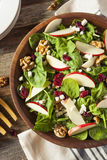 Autumn Apple Walnut Spinach Salad casalingo Fotografia Stock