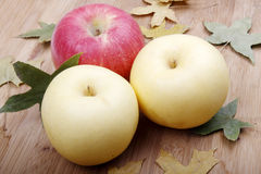 Autumn apples Royalty Free Stock Photo