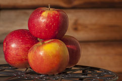 Autumn apples. Autumn or fall is one of the four temperate seasons Royalty Free Stock Photography
