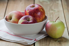 Autumn apples Royalty Free Stock Image