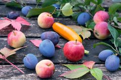 Autumn apples and fruits on old wooden surface in the garden. Selective focus.  Stock Photos