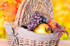 Autumn apples and grape Royalty Free Stock Photography
