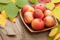 Autumn apples and leaves Stock Photography