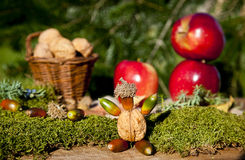Autumn apples and nuts Royalty Free Stock Photo