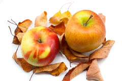 Autumn apples and yellow leaves Royalty Free Stock Image