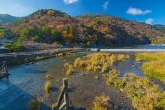 Autumn Arashiyama stock afbeelding