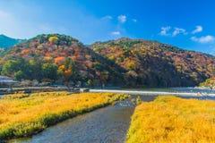Autumn Arashiyama stock foto's