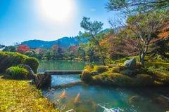 Autumn Arashiyama royalty-vrije stock afbeelding