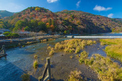 Autumn Arashiyama Stock Image