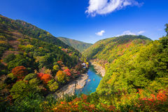 Autumn at Arashiyama view point Stock Image