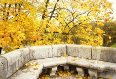 autumn architecture detail outdoor garden yellow leaves tree maple bench stones Stock Photography