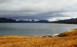 Autumn Arctic landscape in Spitsbergen (Svalbard) Royalty Free Stock Images