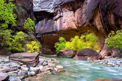 Autumn around the Corner. The Virgin River flows through the Zion Narrows Royalty Free Stock Image