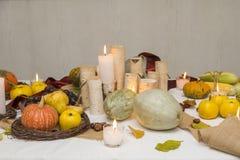 Autumn Arrangement Fotografía de archivo libre de regalías