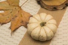 Autumn Arrangement Fotografía de archivo