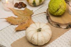 Autumn Arrangement Fotos de archivo libres de regalías