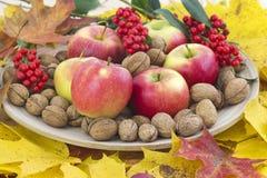 Autumn arrangement Royalty Free Stock Images