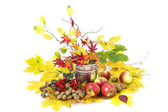 Autumn arrangement. Beautiful arrangement of autumn leaves and red apples and walnuts Royalty Free Stock Photography