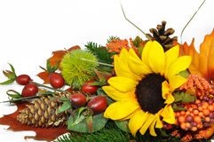 Autumn arrangement Stock Photos