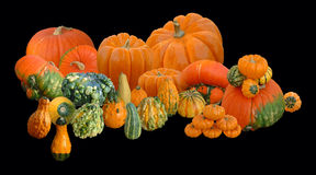Autumn Arrangement. This is an arrangement of several pumpkins and squashes appropriate for the fall spirit Royalty Free Stock Images