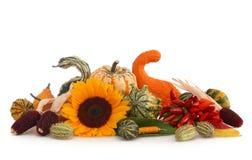 Autumn arrangement Stock Photography