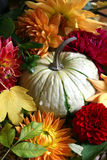 Autumn arrangement Stock Photo