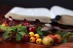 Autumn arrangement and the Bible Royalty Free Stock Photography