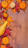 Autumn Arrangement Stock Images