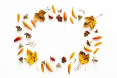 Autumn Frame On White Background Stock Images