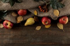 Autumn arrangement with fruit apples and pears and yellow autumn leaves on a brown wooden table with a place for inscription. royalty free stock photo