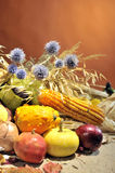 Autumn arrangement with fruits and vegetables Stock Photos
