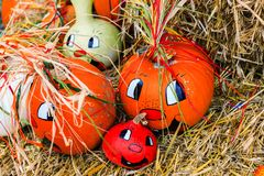 Fun fall pumpkins Stock Image