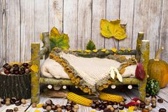 Autumn arrangement for new baby and baby photography Royalty Free Stock Photos