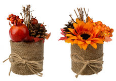 Autumn arrangement - pot with artificial granat, sunflower and cones isolated. Royalty Free Stock Photo