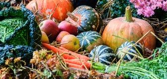 Autumn arrangement with pumpkins Royalty Free Stock Photo