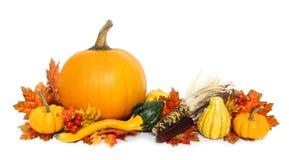 Autumn arrangement Stock Image