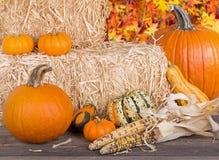 Autumn Arrangement Stock Photo