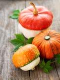 Autumn arrangement of pumpkins royalty free stock image