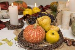 Autumn arrangement royalty free stock photo